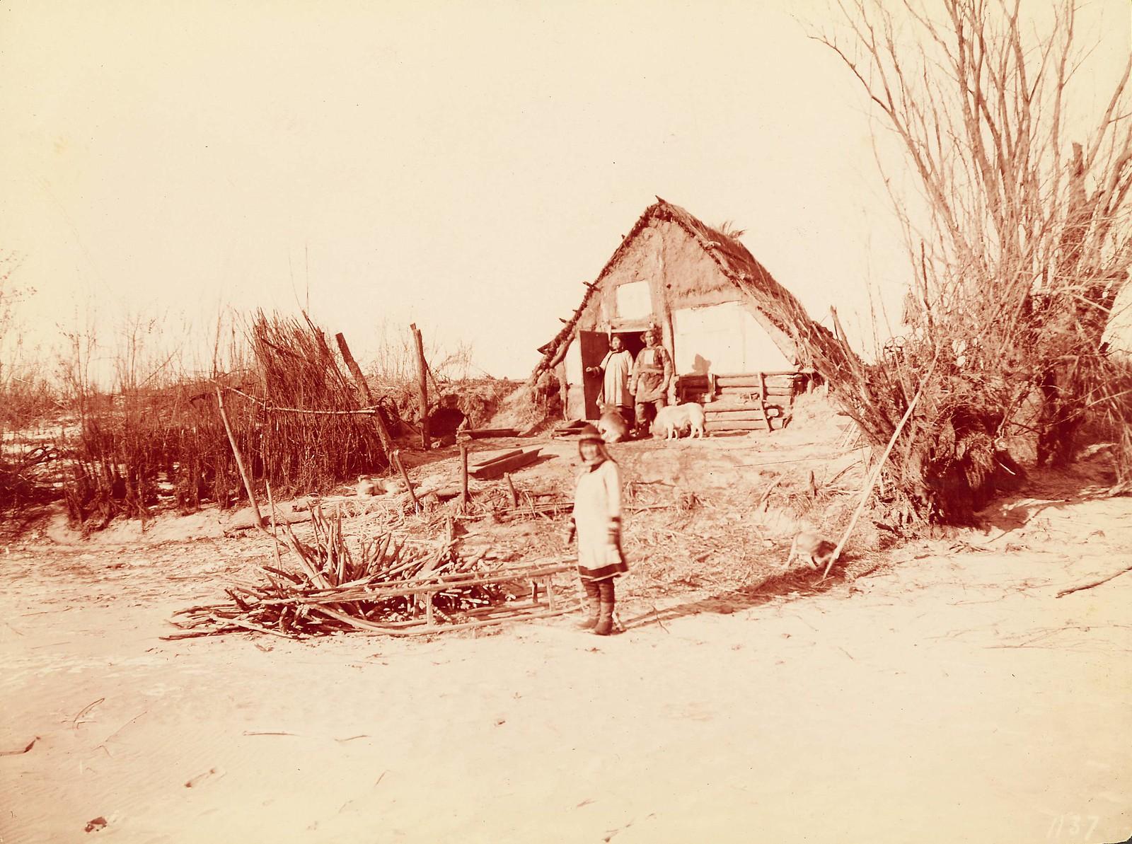 В деревне гольдов к северу от Хабаровска.  Рыбацкая хижина