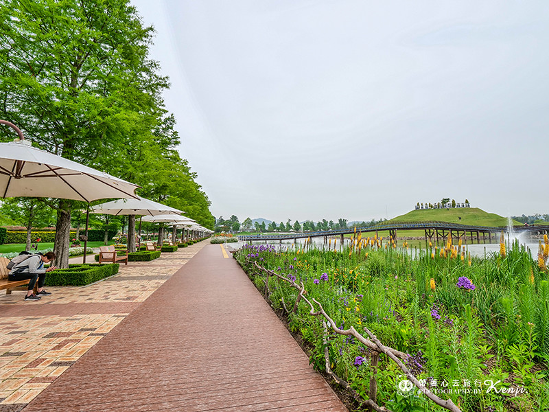suncheon-national-garden-31
