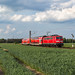 DB 111 169 - Estorf (Weser)