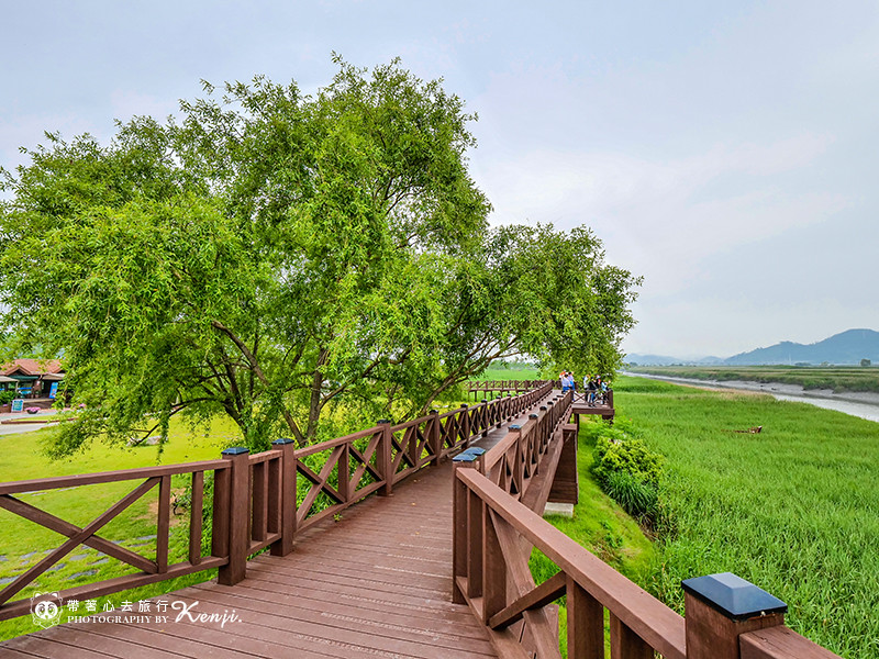 suncheon-national-garden-55
