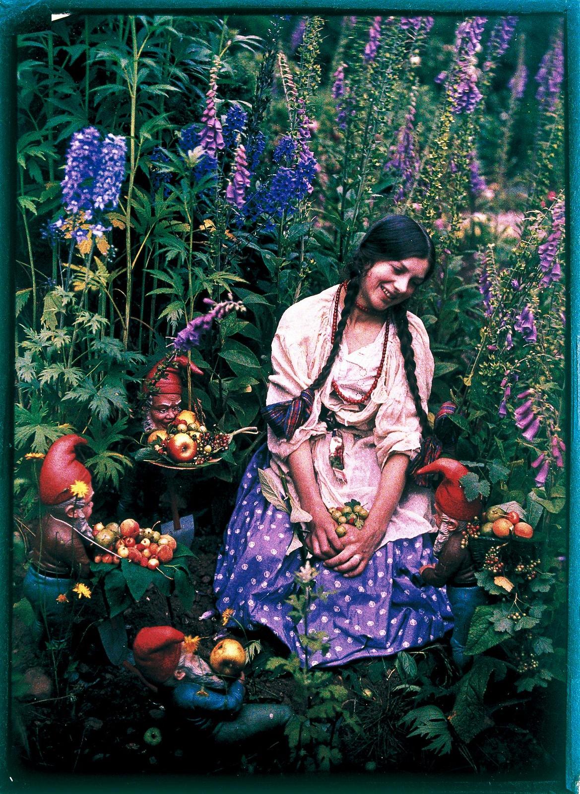 1919. Старые знакомые цветы
