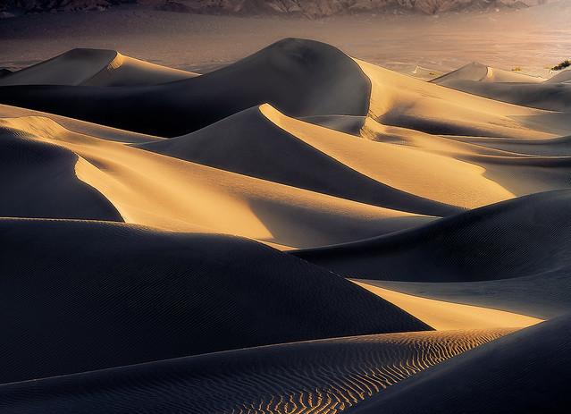 Morning on Dunes