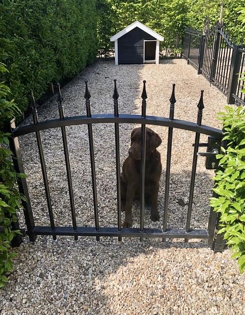 Omheinde plek voor de hond in de tuin