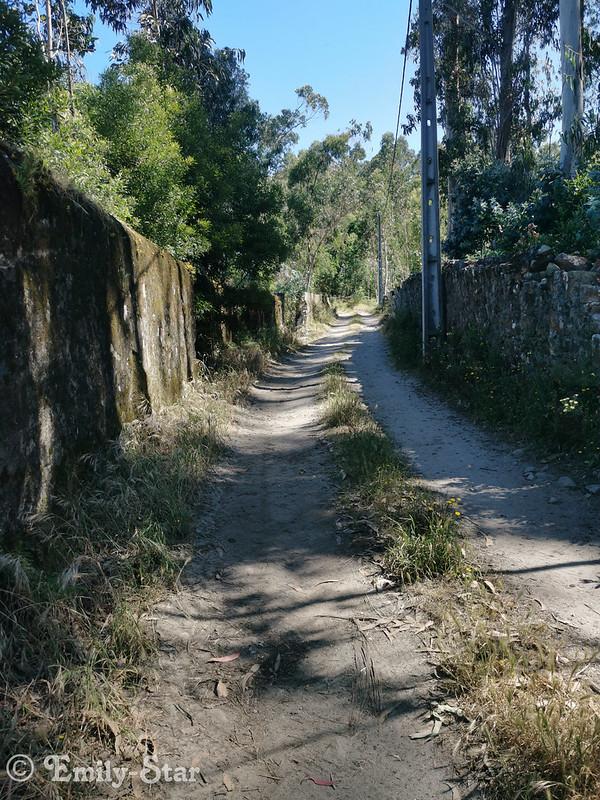 Camino Portugues (322 von 333)