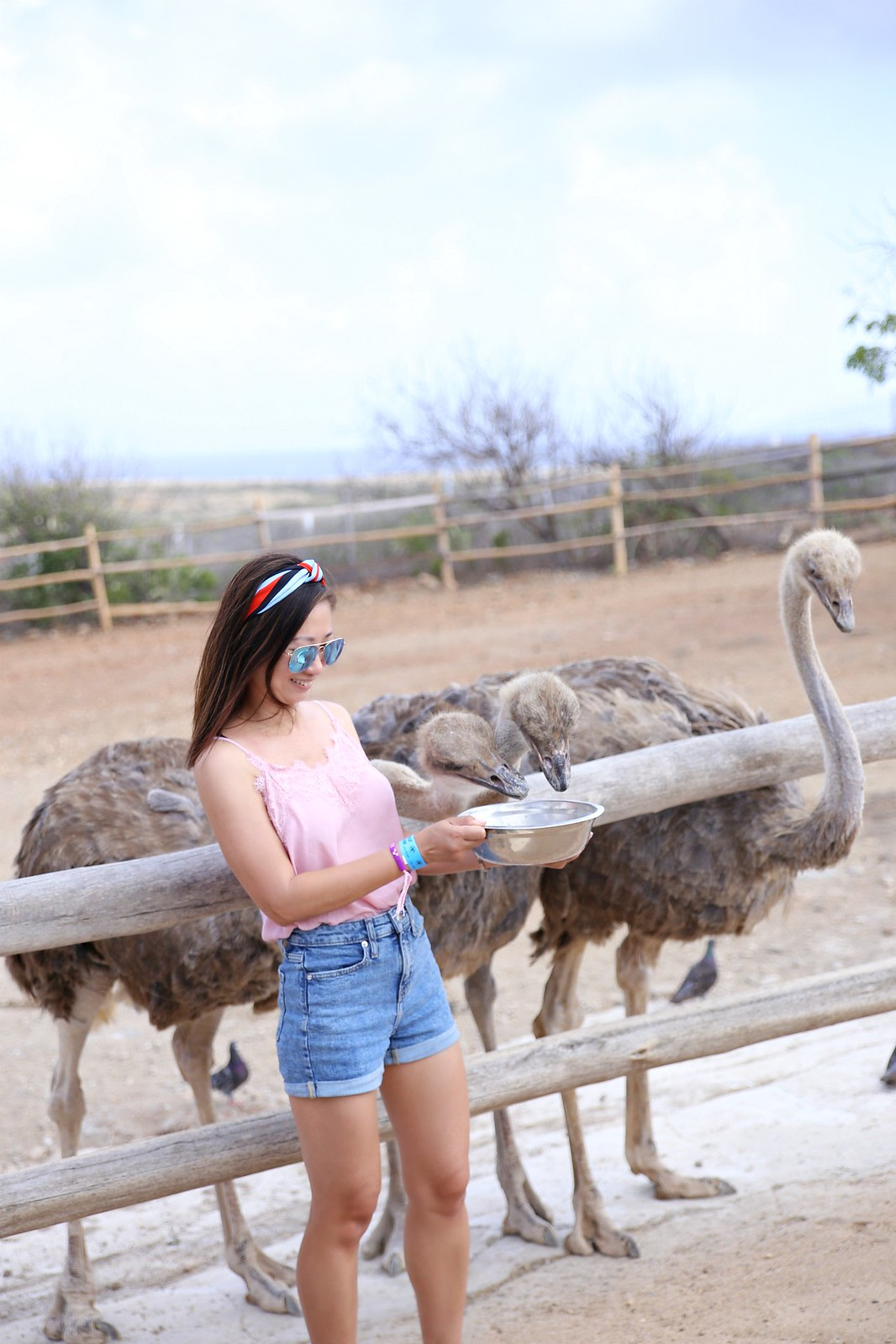 Top10ThingsToDoInAruba_SydneysFashionDiary