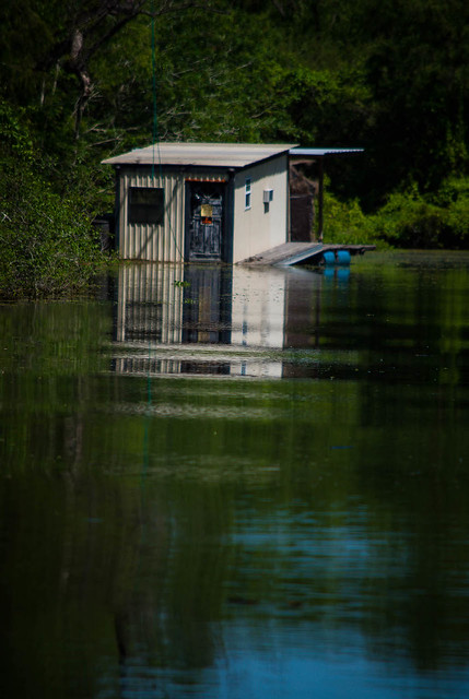 Swamp Cabin Under Some Water