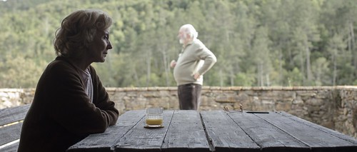 映画『ペトラは静かに対峙する』 ©2018 FRESDEVAL FILMS, WANDA VISIÓN, OBERON CINEMATOGRÀFICA, LES PRODUCTIONS BALTHAZAR, SNOWGLOBE