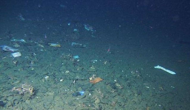 017-deep-ocean-mariana-trench-plastic-pollution-2