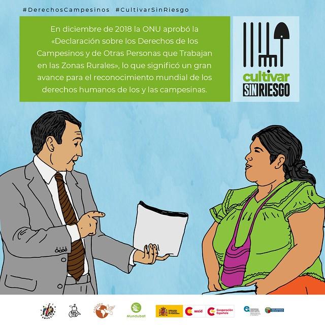 Campaña #CultivarSinRiesgo (Honduras)