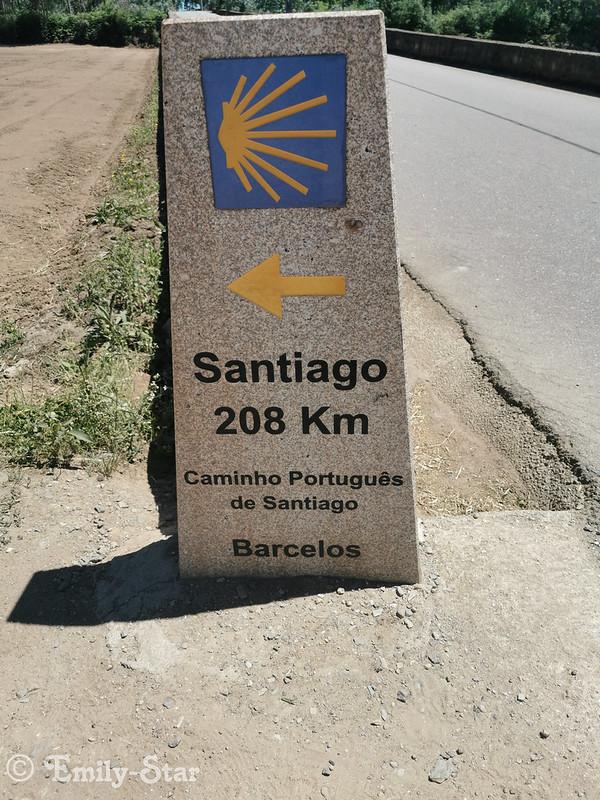 Camino Portugues (17 von 41)