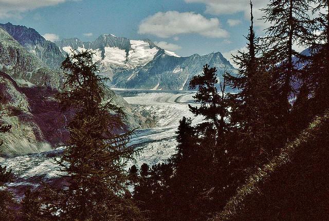 Schweiz,  1983 am Aletschgletscher, 76744/11625