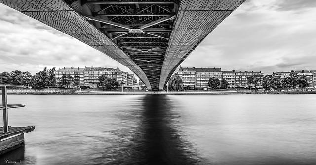 Under the Bridge - 6554