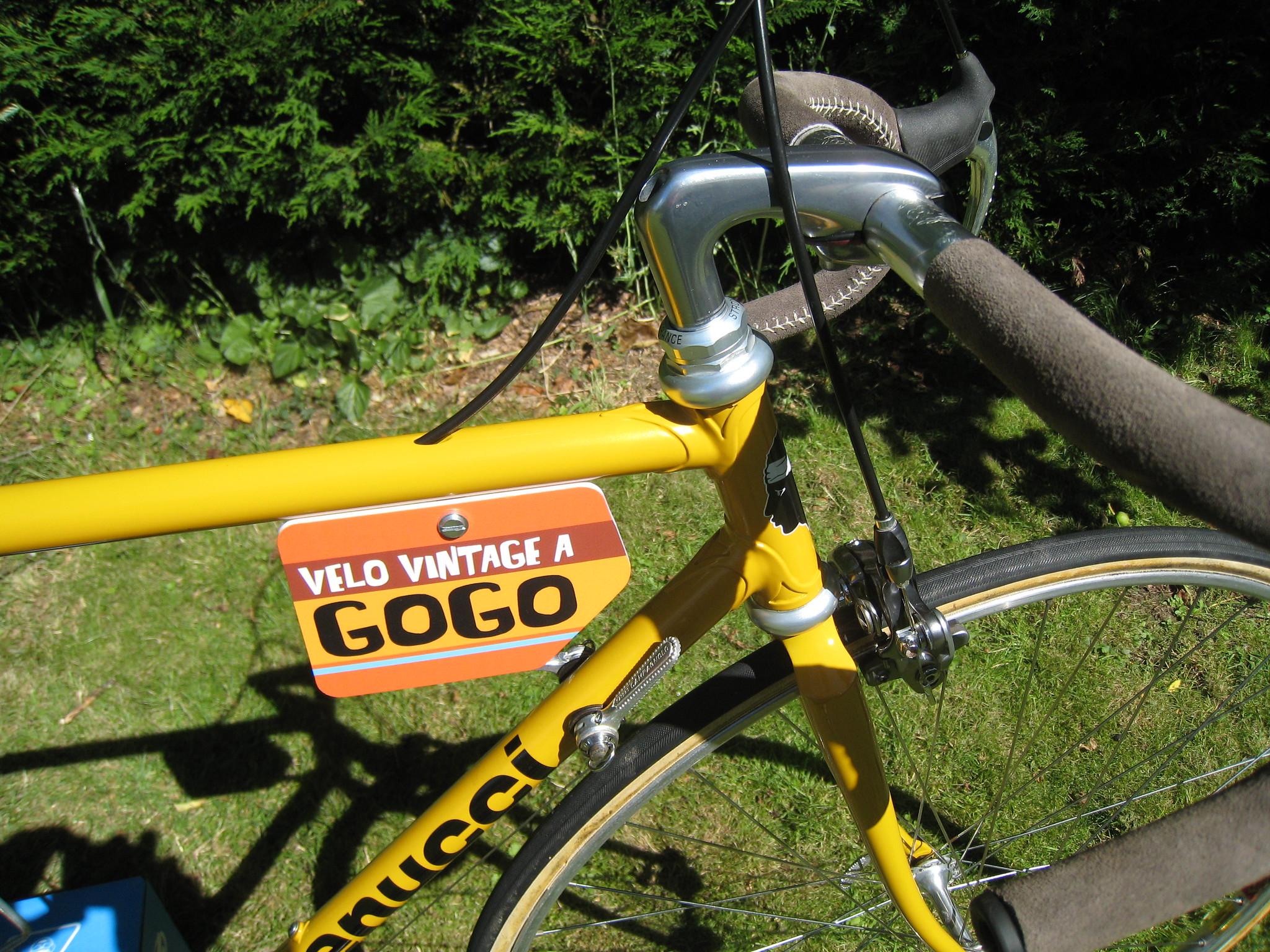 Vélo Gogo 48102677291_ca24e069bd_k