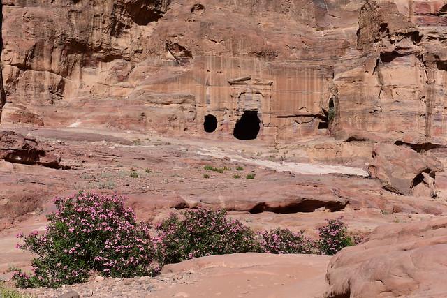 Petra, Jordan, June 2019 150