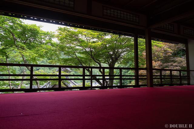 Yanagidani Kannon 2019.6.12 (17) Kami-Shoin