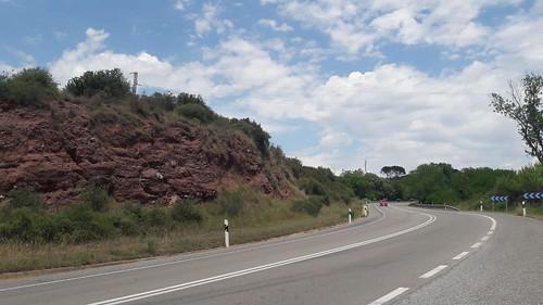 Costa Roja