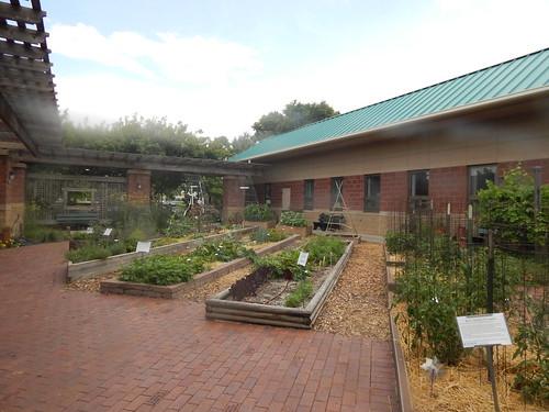 Whole Garden June 21, 2019