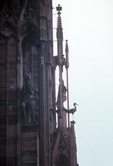 1989.11.07-09 Estrasburgo