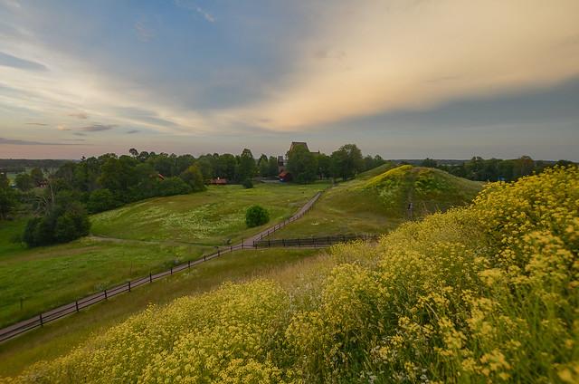 Uppsala, along the path of midsummer