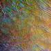 Liquid Crystal Blend 1