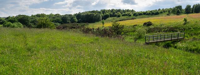Countryside walk. . .