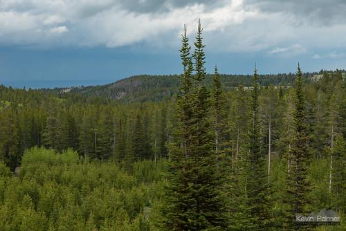 caspermountain casper wyoming june spring forest scenic view clouds sky green trees eadsvilletrail caspermountaincountypark nikond750 tamron2470mmf28