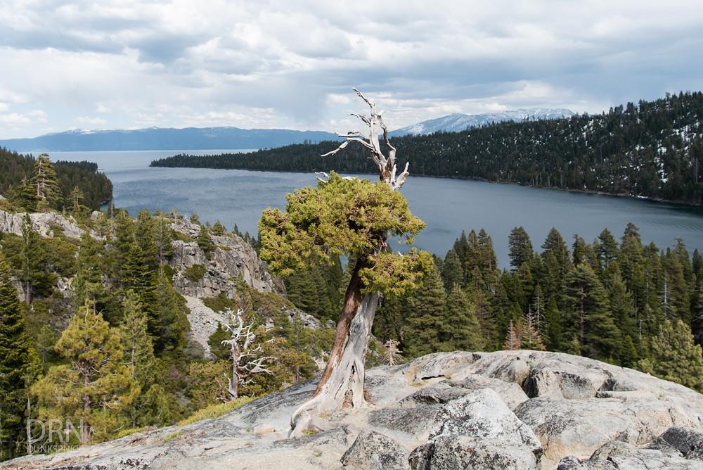 Lake Tahoe - 2019