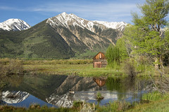 Twin Lakes Cabin Spring