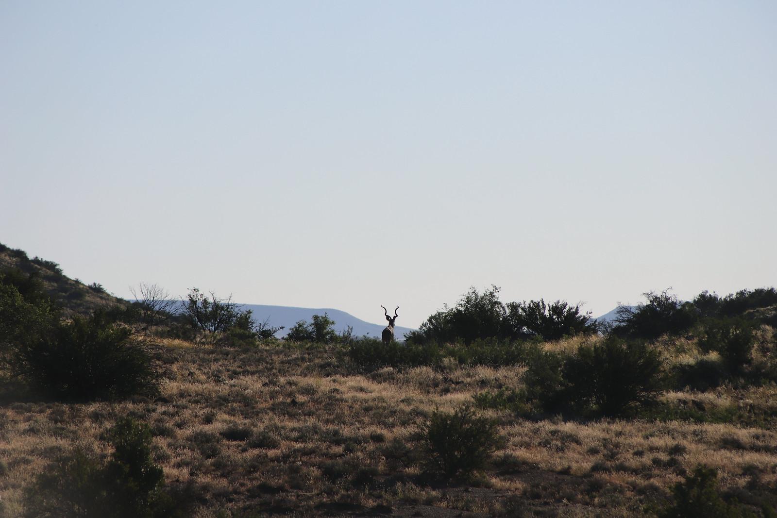 Panorama, Sudáfrica