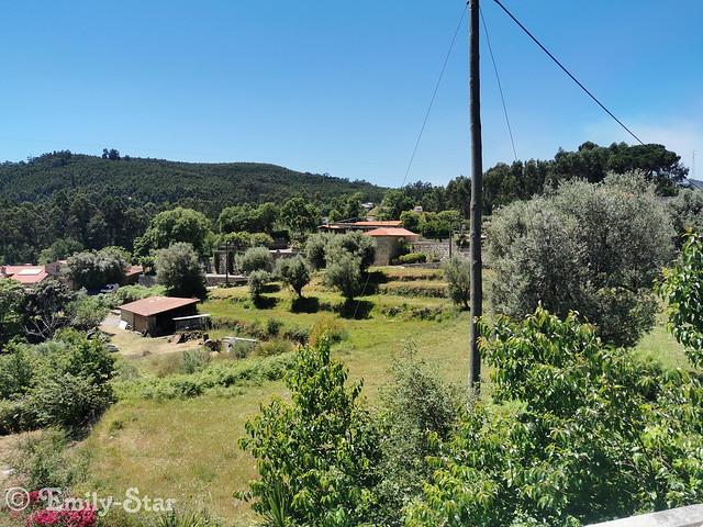 Camino Portugues-141900