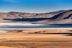 Bolivia-The Altiplano