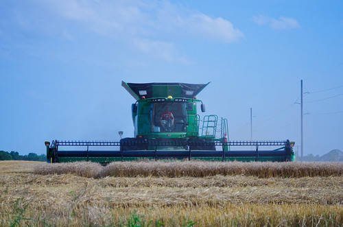 combine, winter wheat | by pepperberryfarm