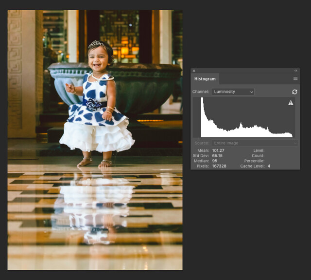 Dark Tonal Histogram Example Image