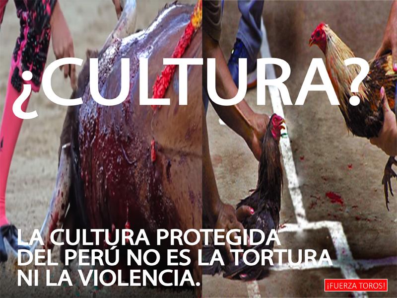 ¿Por qué los espectáculos cruentos no son culturales en el Perú?