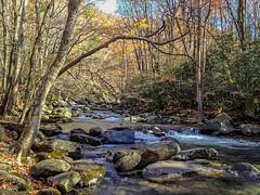 Smoky Mountain Stream 2012-11 02