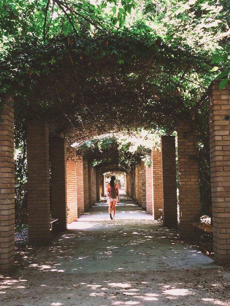 · Jardín Nacional de Atenas · ¿Qué ver en Atenas? · Ruta por Grecia ·