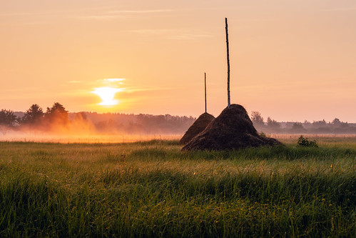 landscape nature poland meadow hay spring sunrise morning