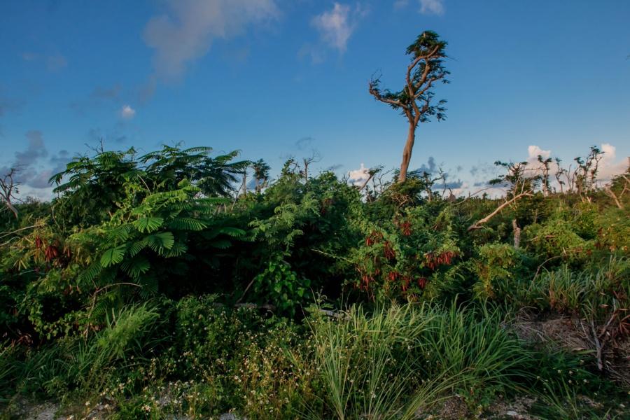 Северные Марианские острова. Северные Марианские острова. 48107756508 421495bc5f o