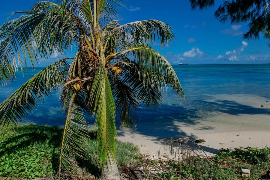 Северные Марианские острова. Северные Марианские острова. 48107819932 ba140c7688 o