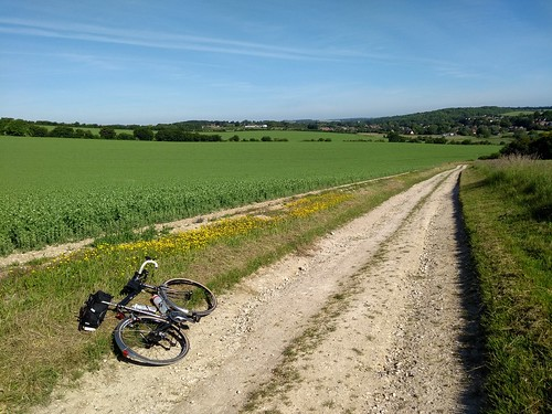 IMG_Lambourn byway | by oxonite