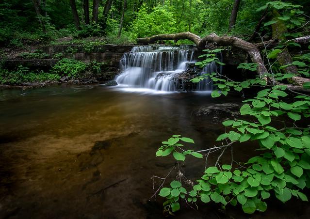 Solstice At Caron Falls - Caron Park