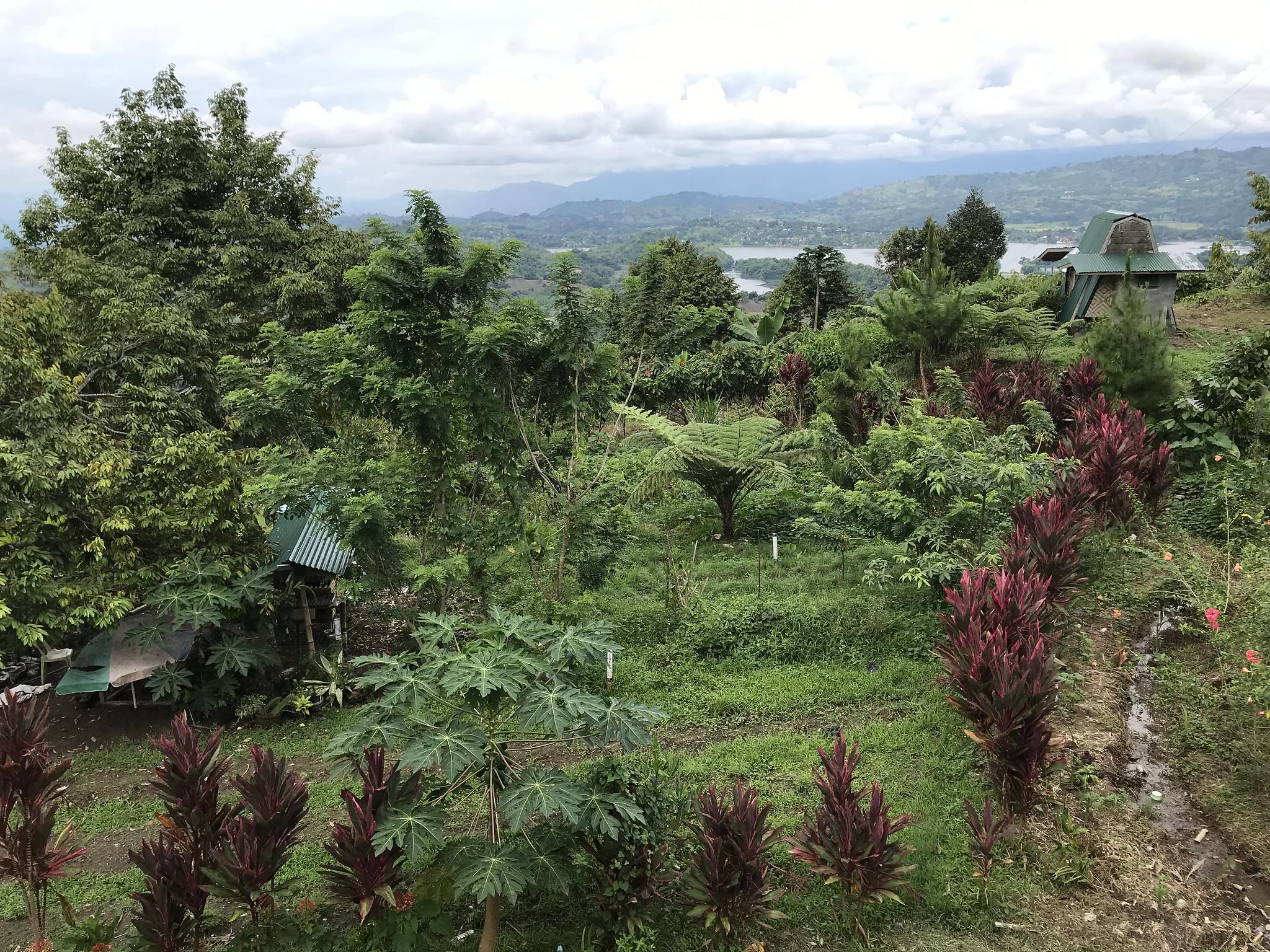 sebul-farm-lake-sebu.jpg