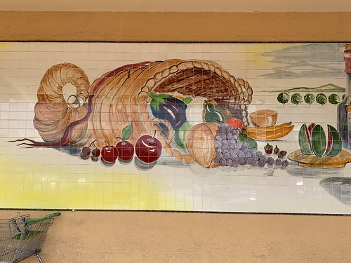 publix tile mural sunrise grocery store supermarket welleby plaza mosaic art pati mills roadside architecture