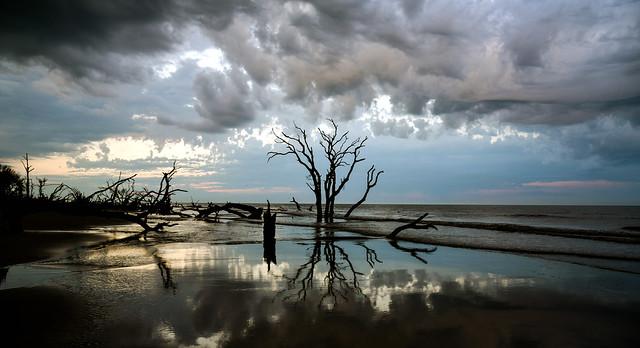Sunrise Boneyard Beach