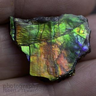 Beautiful ammolite