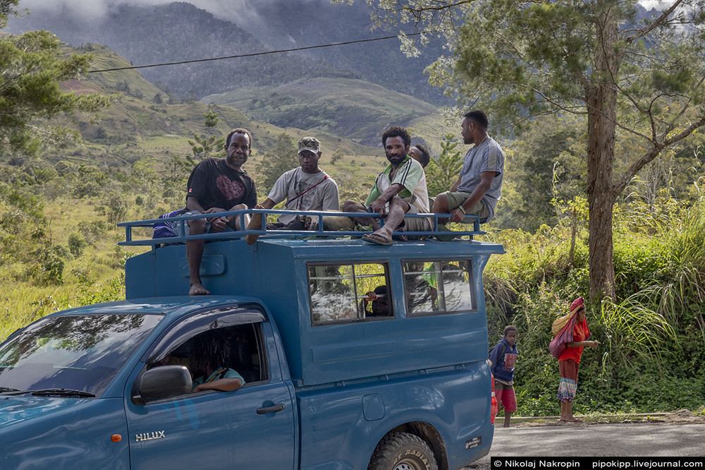 В краю невидимых птиц. Наверх, к кружке горячего чая в долину реки Муги. Канак, больше, Бъянош, дальше, Папуасии, Хитуги, когда, дождя, чтобы, вдруг, меньше, наверх, только, через, Наконецто, сегодня, после, рядом, костра, напряжения