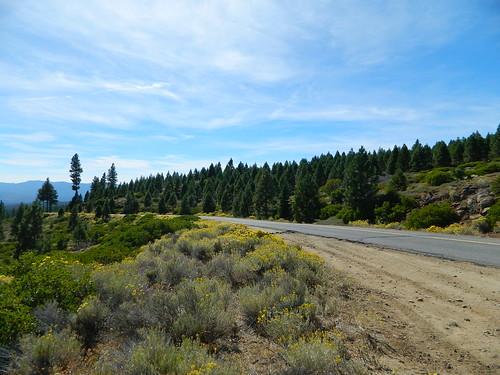 Road to Eagle Lake, California