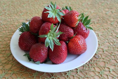 Erdbeeren (vom Stand des Hofes Wickemeyer)