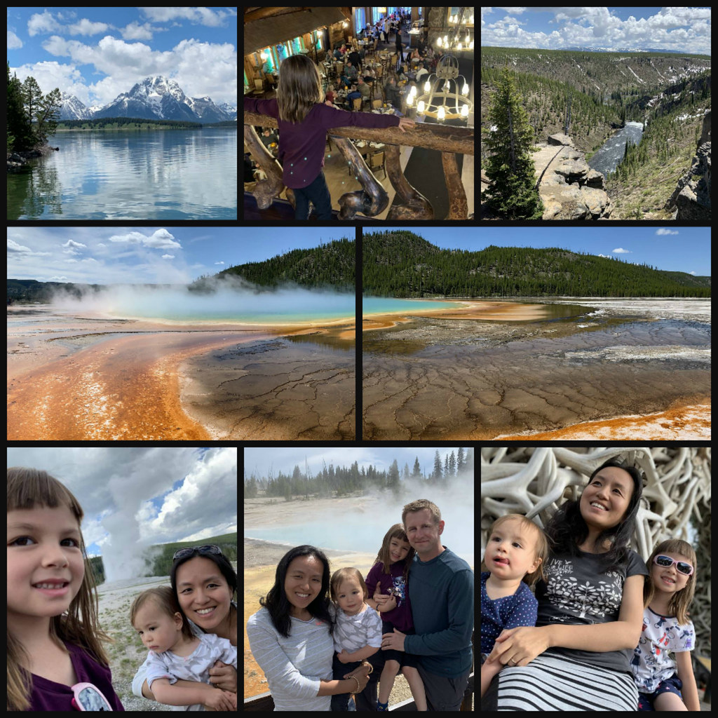 Yellowstone trip collage