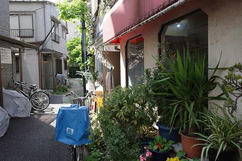谷根千散歩〜谷中界隈